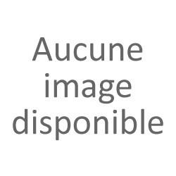 Panettone classico Borsari (1kg)